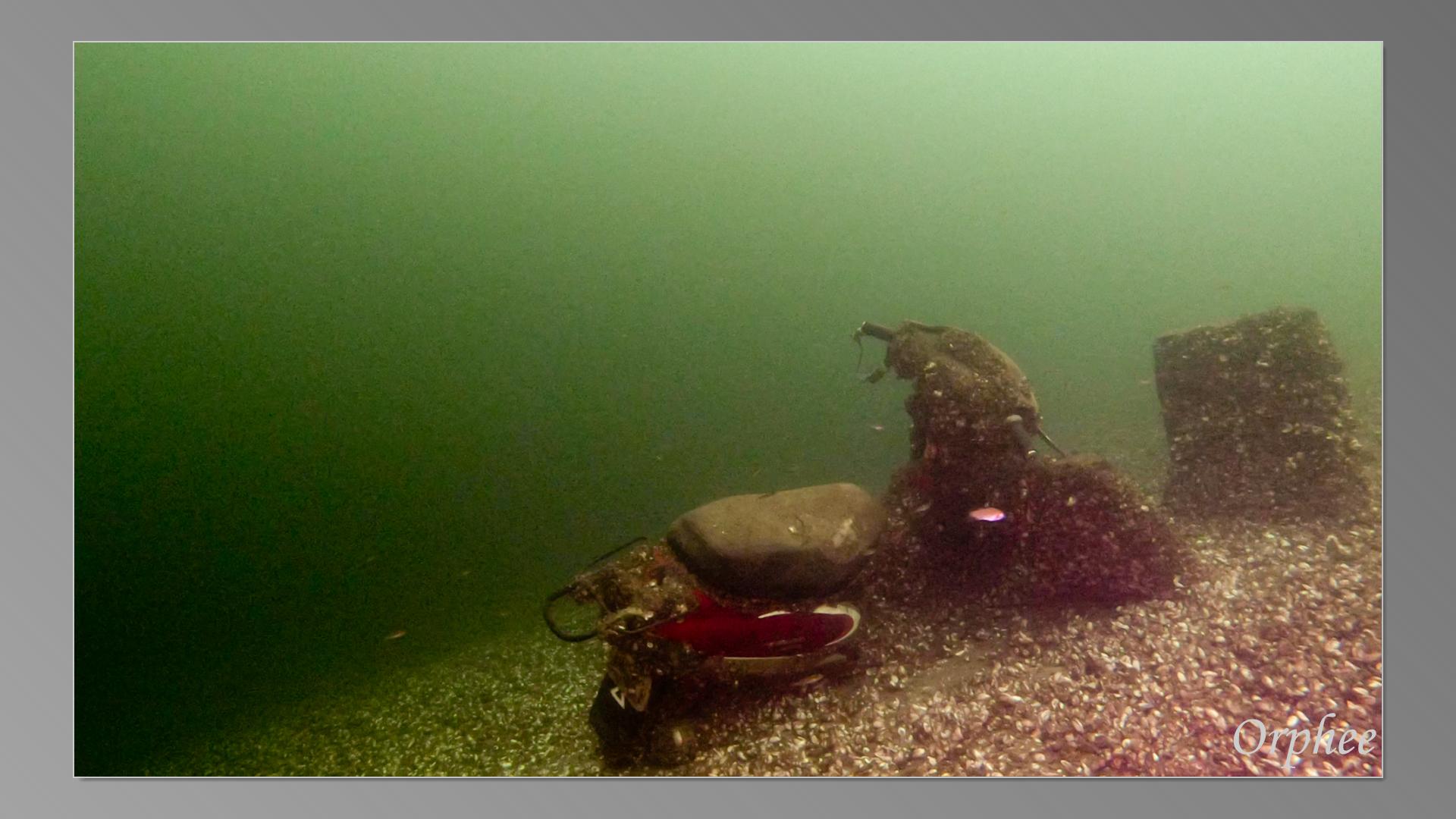 Lac-de-leau-dheure-28-08-2021-05