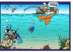 La plongée, un plaisir à découvrir(1)